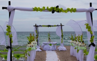 beach_wedding theme party decor picture