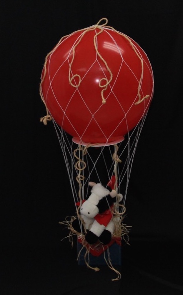 hot air balloon gift baskets